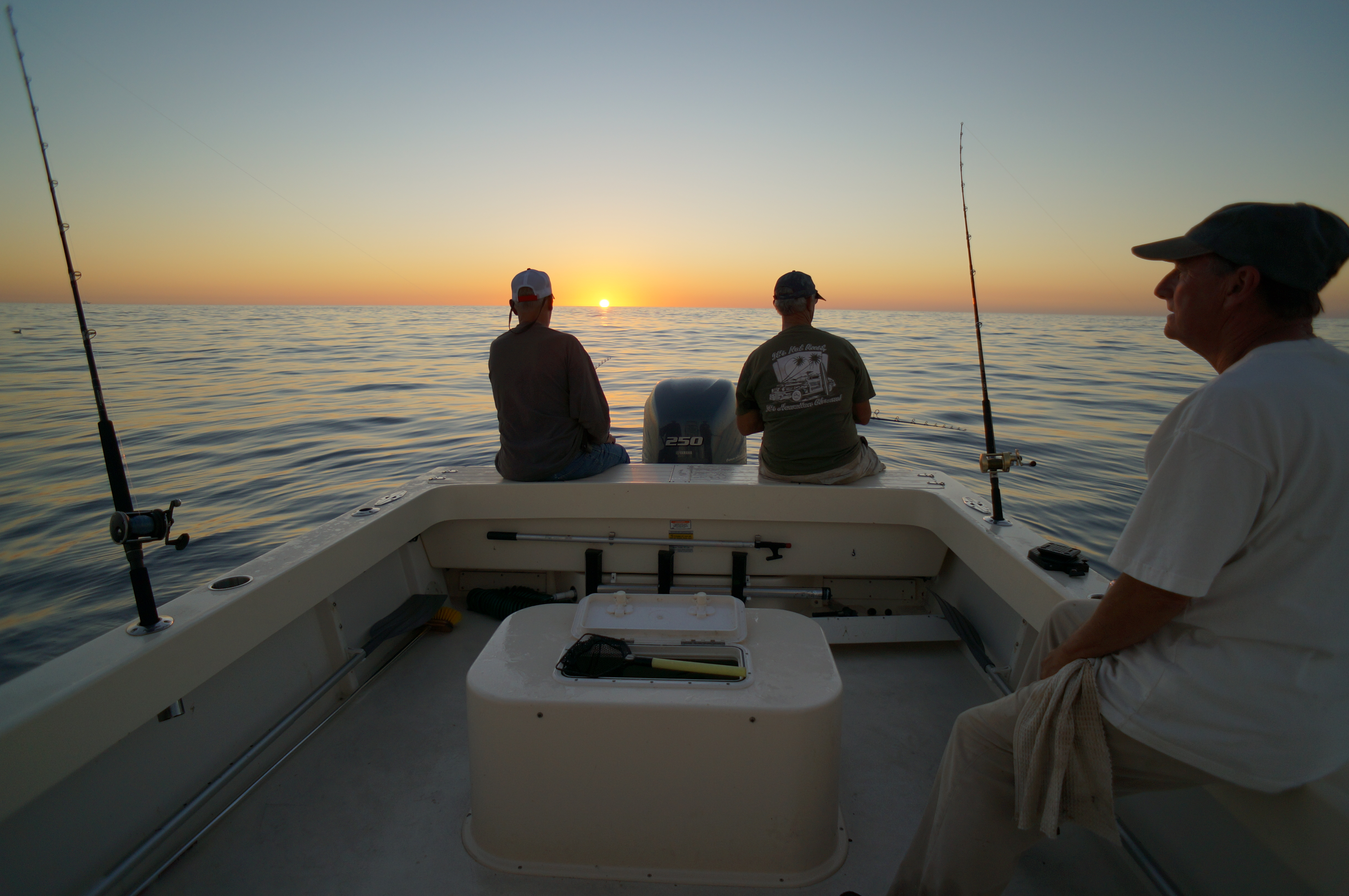 Sportfishing charters open party fishing 20 years expertise for Dana point fishing