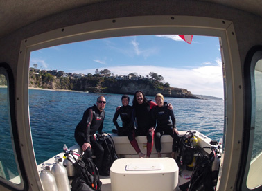 Private free diving spear fishing charters dana point for Dana point fish report