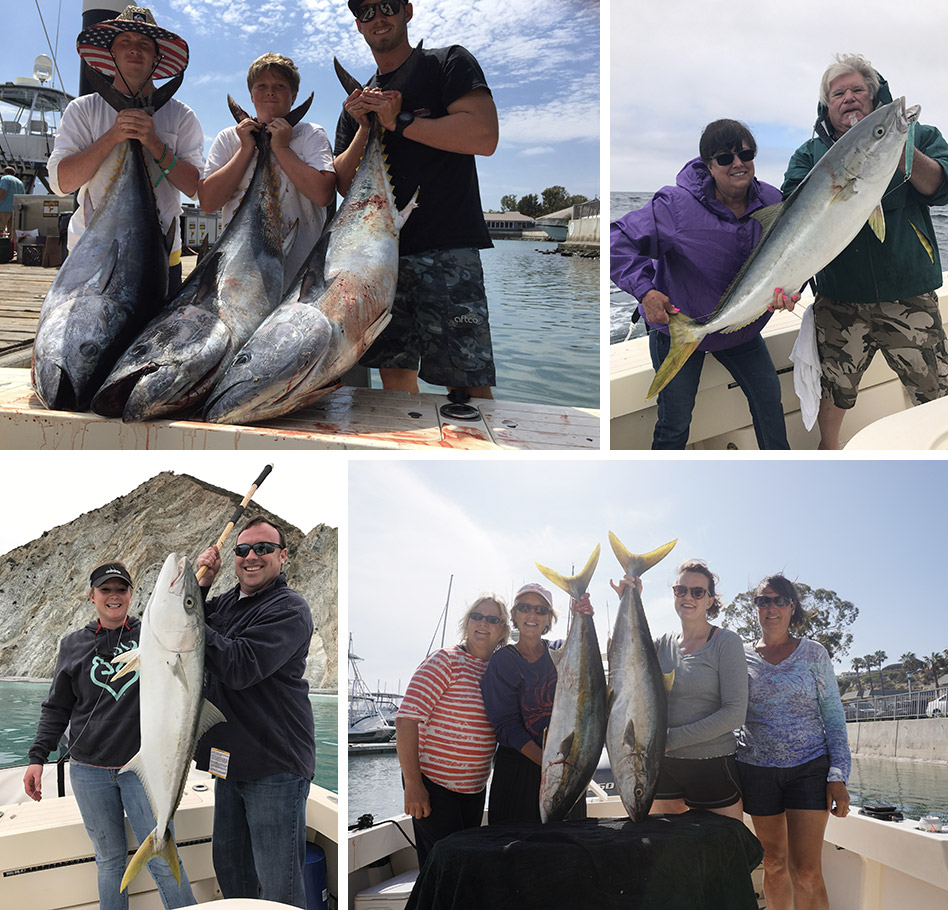 Orange County Fishing Oc Sportfishing
