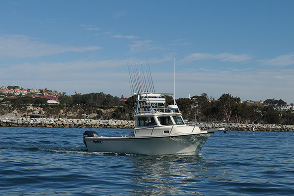 Sport fishing fleet in dana point book your trip today for Dana point harbor fishing