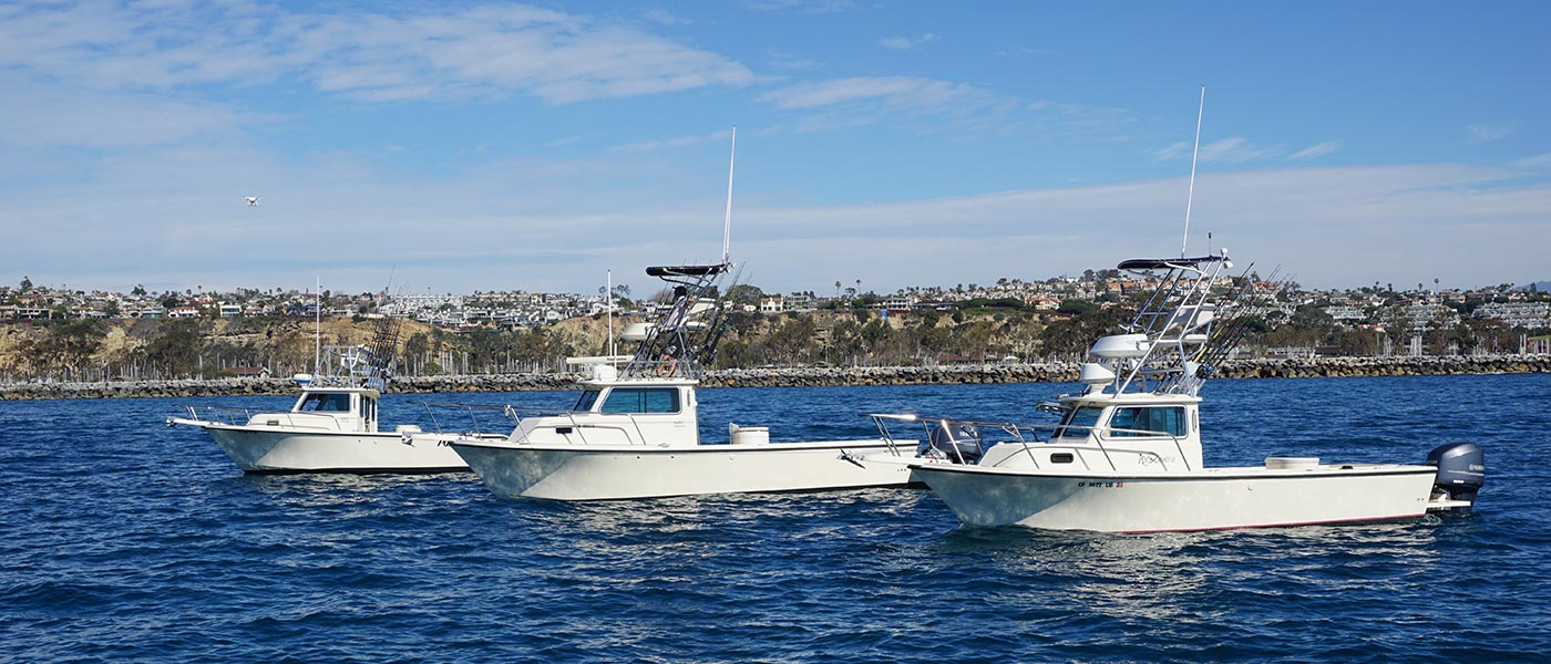 dana point fishing charters
